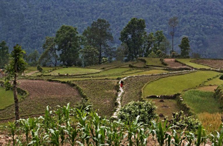 Nepál nejsou jen Himáláje